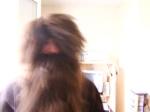 Seb Hagrid