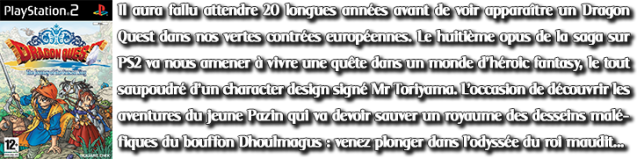 Decription PT S3 #11 DQ8 PS2