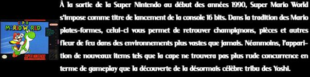 Decription PTs3_7 Super Mario World