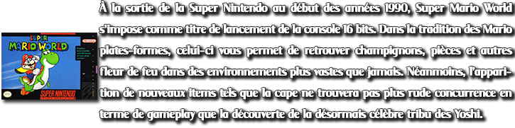 Decription PTs3_7 Super Mario World
